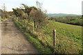 SY4890 : Bridleway near Bennetts Hill Farm by Derek Harper