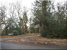 TQ0084 : Fulmer Common Road at the junction of Cherry Tree Lane by David Howard