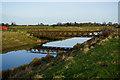 TA3301 : Farm bridge over Louth Canal by Ian S