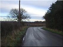 SE3982 : Sharp bend on Sandhutton Lane by JThomas