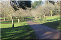 SO2800 : Path near bandstand, Pontypool Park by M J Roscoe