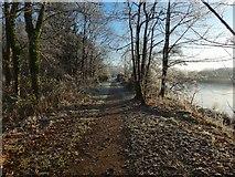NS3977 : Strathleven Walk by Lairich Rig