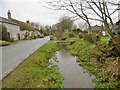SY6488 : Winterborne St Martin, River South Winterborne by Mike Faherty