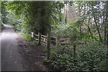 TQ3130 : Footpath off Mill Lane by N Chadwick