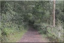 TQ3229 : Footpath by Ardingly Reservoir by N Chadwick