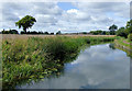 SO8685 : Canal and farmland near Stourton, Staffordshire by Roger  Kidd