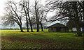 SE3155 : Trees on the Stray, Harrogate by Derek Harper