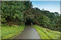 SW7124 : Entrance drive to Trelowarren by Ian Capper