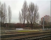 SJ8499 : View across the tracks by Gerald England