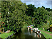 SO8483 : Visitor moorings at Kinver in Staffordshire by Roger  Kidd