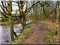 SD7914 : Path alongside the Irwell at Summerseat by David Dixon