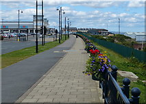 NZ4349 : Path along the A182 in Seaham by Mat Fascione