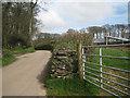 SX8151 : Lane from Blackawton approaching Oldstone Post by Robin Stott