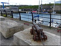 NZ4349 : Small cannon at the Seaham Harbour Marina by Mat Fascione