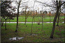 SK1814 : Soggy ground in the National Memorial Arboretum by Bill Boaden