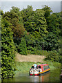 SO8583 : Wooded hillside and canal near Dunsley, Staffordshire by Roger  Kidd