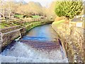 SX1083 : Fish Ladder on the River Camel, Camelford Bridge by Bill Henderson