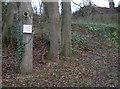 ST4673 : Please double park by Neil Owen
