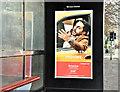 """J3474 : Norwegian Airlines """"Boston"""" advertisement, Belfast - Decemeber 2017(2) by Albert Bridge"""