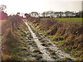 SJ6068 : Byway to Totties Hall by Stephen Craven