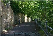 NZ2742 : Path along the River Wear in Durham by Mat Fascione