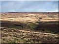 NZ0039 : Moorland slope descending towards Black Burn by Trevor Littlewood