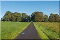 SW7124 : Entrance drive, Trelowarren by Ian Capper