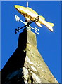 SS8986 : Fish weathervane on the bellcote, St David's Church, Bettws by Jaggery