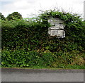 SO3204 : Pre-Worboys sign in a Park y Brain hedge, Penperlleni by Jaggery