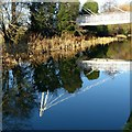 SK4832 : Long Eaton School footbridge by Alan Murray-Rust