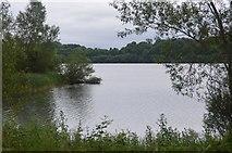TQ3329 : Bay, Ardingly Reservoir by N Chadwick