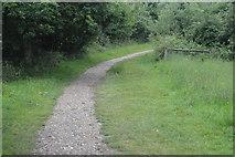 TQ3329 : Footpath by Ardingly Reservoir by N Chadwick