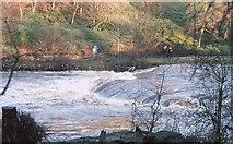 NS5666 : River Kelvin in spate by Richard Sutcliffe