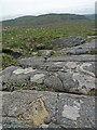 NB2245 : OS Bolt, Cnoc na Moine, Isle of Lewis by Claire Pegrum