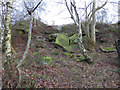 SE2333 : Possible old adit entrance in Post Hill woods by Stephen Craven