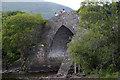 V9385 : Brickeen Bridge, Muckross, Killarney National Park by Phil Champion