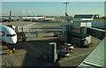 TQ0575 : Gate C66, Heathrow airport by Derek Harper