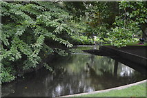 TQ2668 : River Wandle by N Chadwick