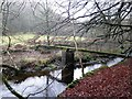 NY9449 : Footbridge near Derwent Head by Andrew Curtis