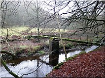 NY9449 : Footbridge near Derwent Head by Andrew Curtis