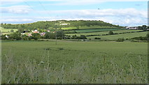 NZ3244 : Pittington Hill viewed from Pittington Lane by Mat Fascione