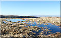 NY6801 : Frozen pool on ridge by Trevor Littlewood