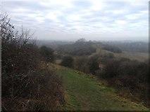 SP1566 : Towards Beaudesert Castle by Dave Thompson