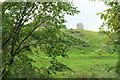 NZ0615 : Egglestone Abbey: seen from below by Bob Harvey