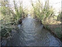 S4126 : The Lingaun River near Faugheen by Redmond O'Brien