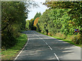H1752 : A46 Lough Shore Road at Blaney by David Dixon