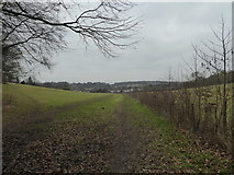 SP8800 : Path between Angling Spring Wood and Great Missenden by Jeremy Bolwell