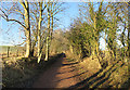 NT4566 : Former Railway Track : Week 2