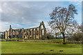 SE0754 : Bolton Abbey by Ian Capper