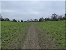 SP8800 : Path between Angling Spring Wood and Prestwood by Jeremy Bolwell